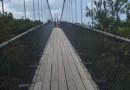 绝句.吊桥