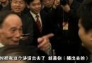 崔永元 范冰冰 王岐山 私人恩怨和大革命