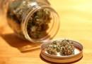 加拿大大麻合法第一天,网购每分钟 100 个订单