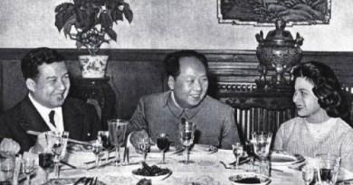 《十七年》(1959–1976)之八十七