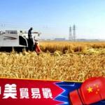 美中农产品关税配额争端:世贸裁决美方获胜