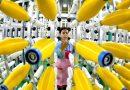 """""""世界工厂""""中国能否转向""""内循环""""为主的经济模式"""