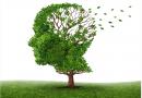 失智症的认识与预防讲座