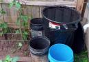 水源宝贵自挖井存屋顶排雨水浇菜园感觉爽